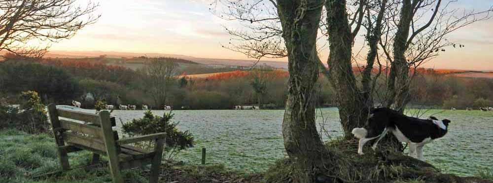 Frosty morning, looking South towards Dartmoor, across Devon's patchwork countryside