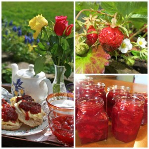 Devon Cream tea, with home-made scones and strawberry jam, welcome to Huxtable Farm B&B, North Devon near Exmoor