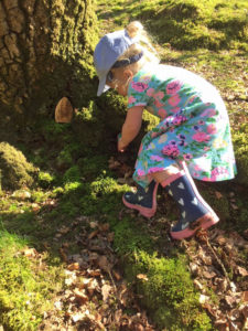 Looking for fairy doors