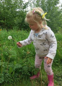 Pick a dandelion  & blow :)