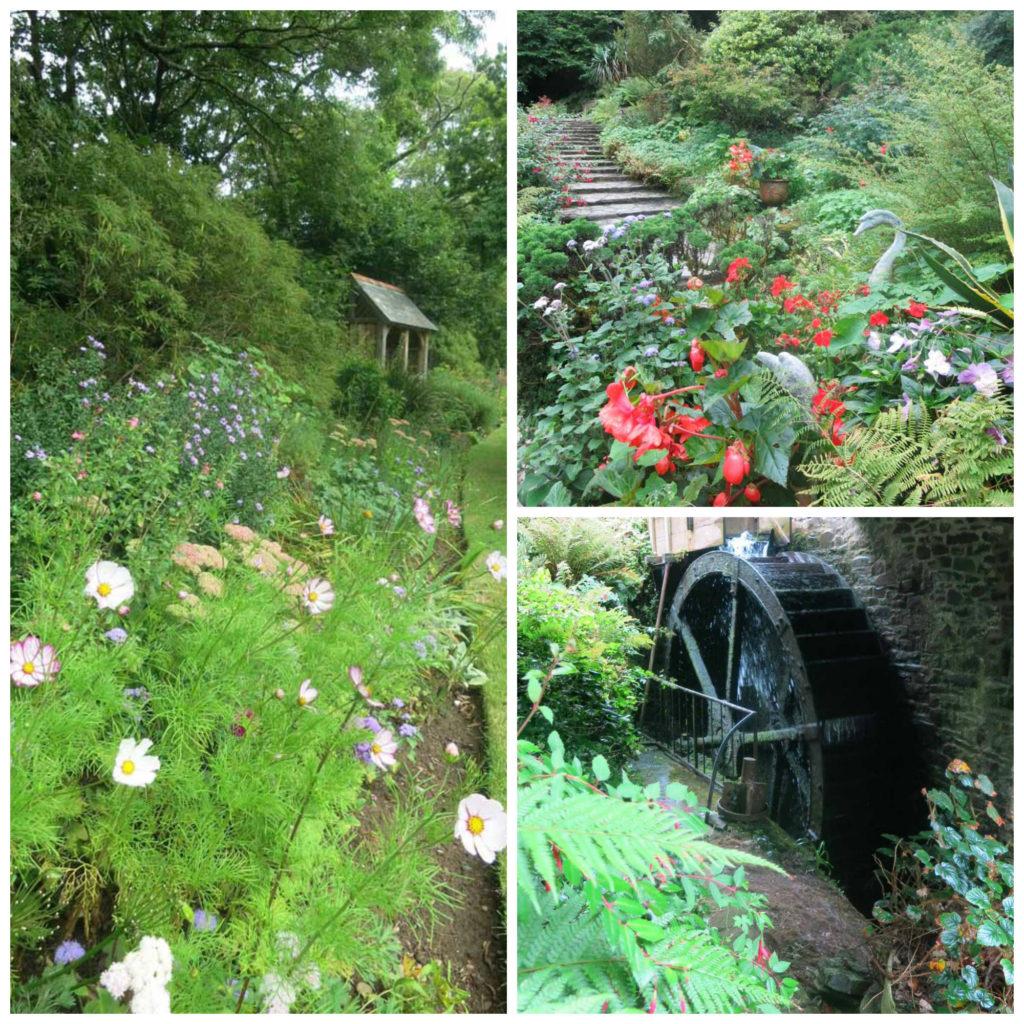 Docton Mill Gardens, Hartland, Devon