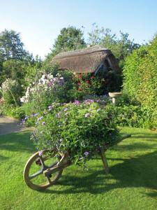 RHS Rosemoor Gardens, Devon