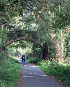 Cycling theTarka Trail, North Devon