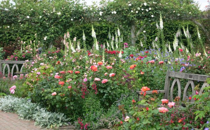 Gardens of North Devon