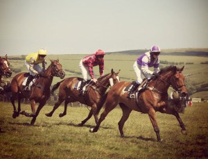 Point-to-point racing in North Devon (Bratton Down & Umberleigh)