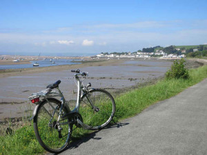 Tarka Trail cycle route near Instow