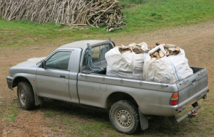 Truck with two dumpy bags of logs