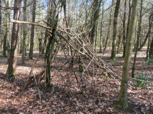 Build a den in the woods