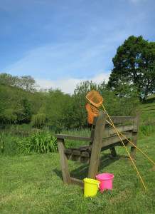 Fishing for tadepoles in Huxtable Farm's pond
