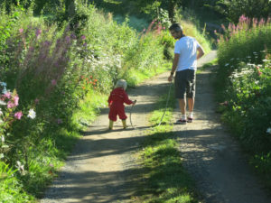 Walk the Devon Wildlife Farm Trail