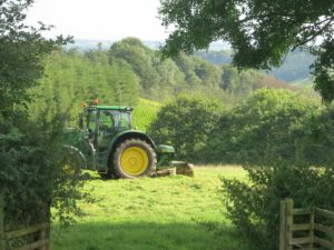 Mowing the grass to make hay at farm B&B Devon