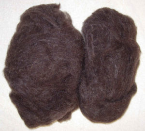 Jacob washed and carded fleece ideal for spinning or felting