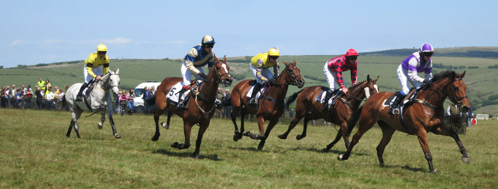 Point to point horse racing