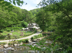 Watersmeet National Trust property near Lynmouth