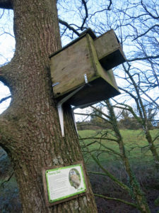 Owl box on Wildlife farm trail