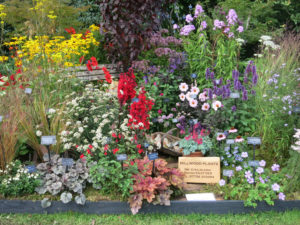 RHS Rosemoor Flower Show