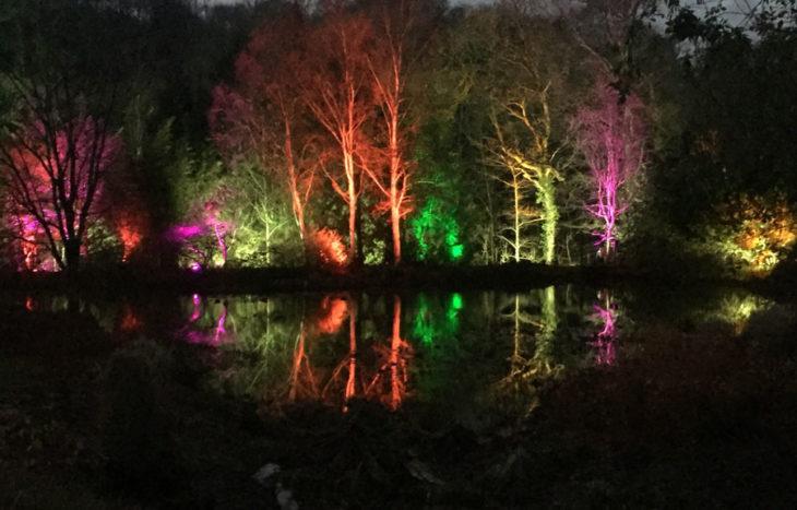 RHS Rosemoor lights