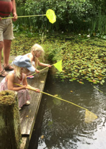 Fishing in Pond