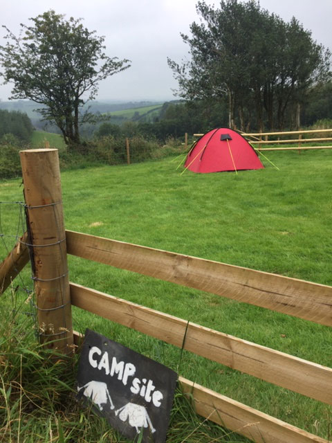 Camping Pitch 2