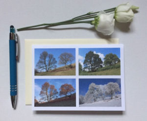 2-trees-4-seasons-Card £2.50 each or 5 for £10