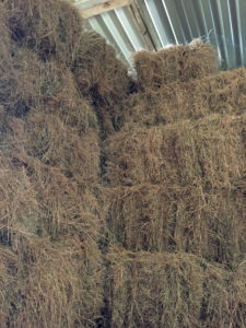 Barn stored small bale hay